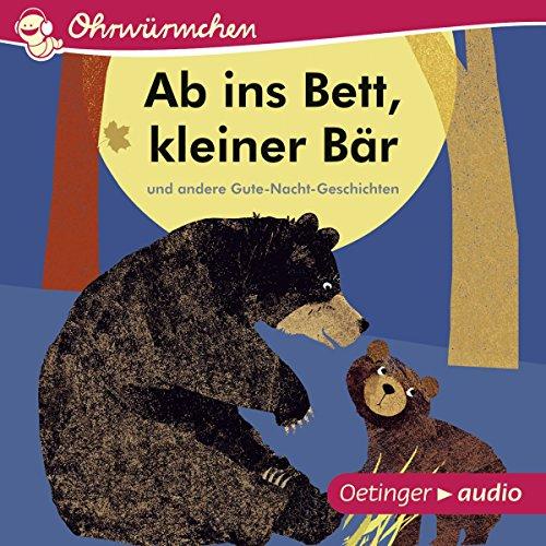 Ab ins Bett, kleiner Bär und andere Gute-Nacht-Geschichten Titelbild