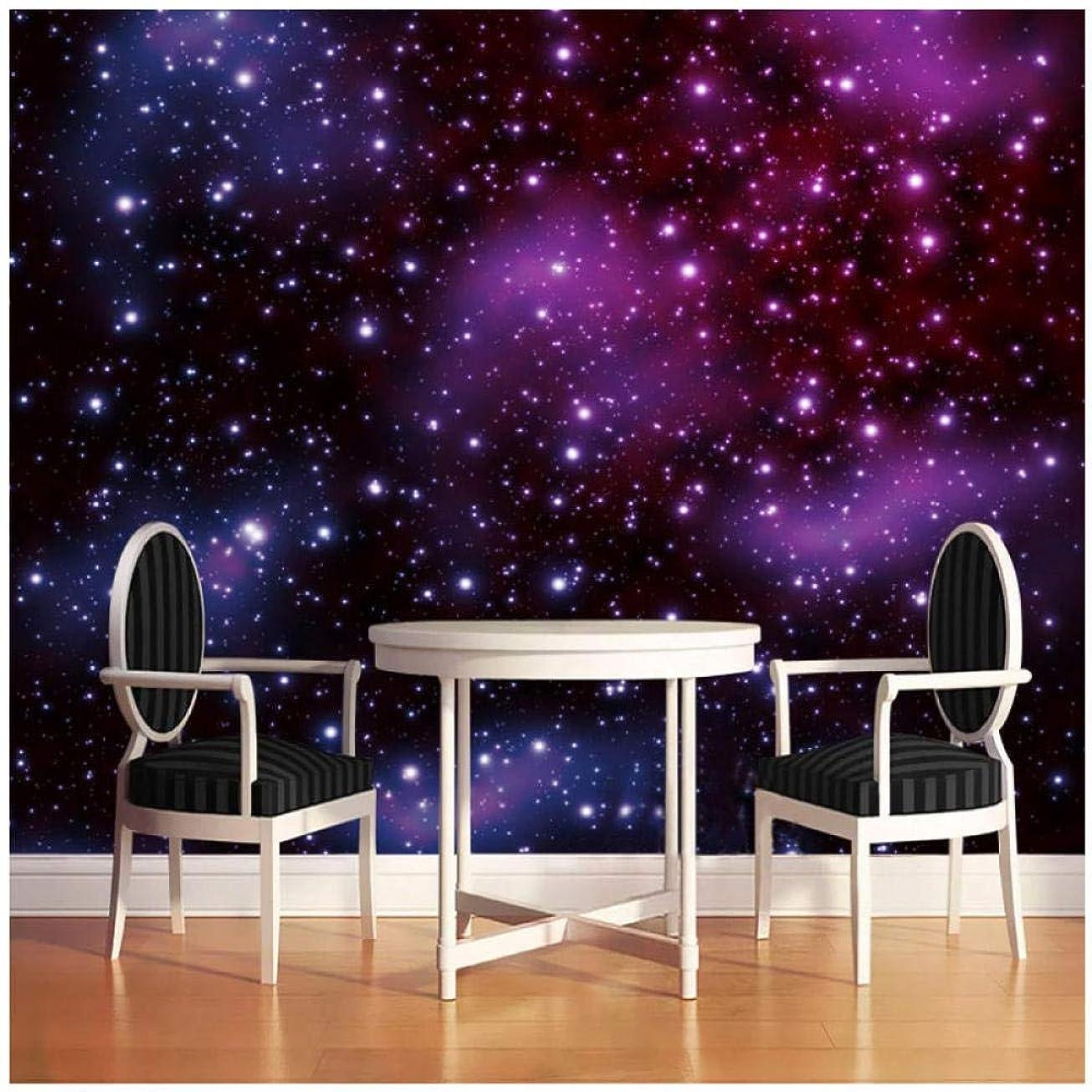 特派員質素なプランター寝室の壁の3D写真の壁紙星空現代アート壁画リビングルームレストランの装飾壁画-300センチ(幅)×200センチ(H)(9'10