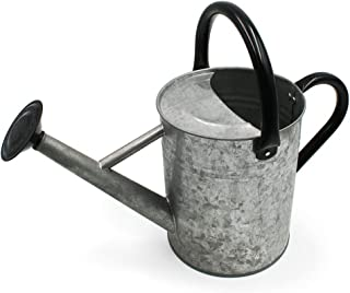 Cesun Metal Watering Can Galvanized Steel Watering Pot with Removable Spray Spout, Movable Upper Handle, Easy to Use for Outdoors Gardening, 1 Gallon-Vintage Zinc