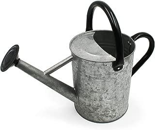 Cesun Metal Watering Can Galvanized Steel Watering Pot for Outdoors Gardening, 1 Gallon-Vintage Zinc