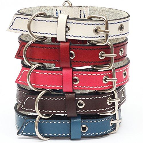 forPups Hundehalsband aus echtem Leder, mit Edelstahlschnalle und Doppel-D-Ringen - unzerbrechlich. Unzerstörbar! - Das stärkste handgenähte Lederhalsband in Amazon, 12