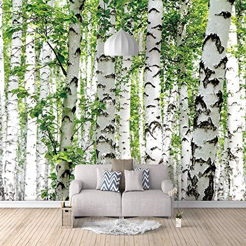 3D Fototapete Wandbild Birke Wald Aufkleber selbstklebende leinwand für Schlafzimmer Wohnzimmer Tv Hintergrund Wanddekoration Wandbilder 350cm(W) x256cm(H)-7 Stripes