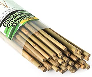 Pllieay 25 Pieces Natural Bamboo Stakes, 2 Feet