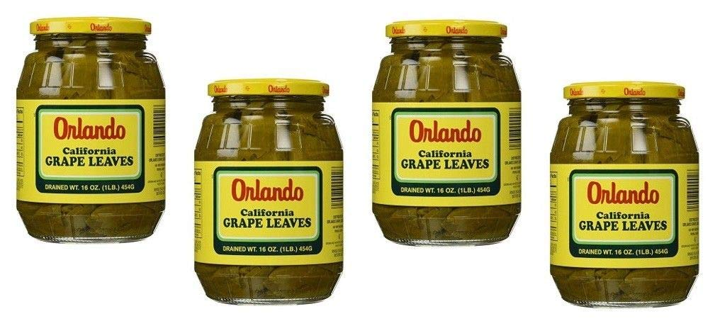 Orlando Grape Leaves Popular product California Premium Tender Today's only Style Qual
