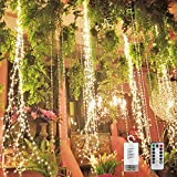 PXB 220 LED Firefly Bunch Lights, Copper Wire Waterfall Lights with Battery Operated Timing Function 8 Modes Waterproof Remote Control, Fairy String Lights for Indoor Wedding Christmas