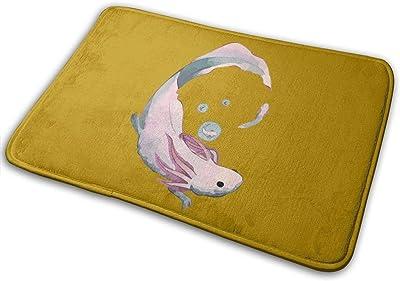 Axolotl Evolution Carpet Non-Slip Welcome Front Doormat Entryway Carpet Washable Outdoor Indoor Mat Room Rug 15.7 X 23.6 inch