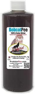 Predator Pee 100% Bobcat Urine - Territorial Marking Scent - Creates Illusion That Bobcat is Nearby - 12 oz