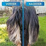 Bluepet Hundebürste / Unterfellbürste – Antiallergisch, befreie deinen Liebling von Unterwolle – Innovatives Design – Entfilzen und Trimmen zugleich für optimale Fellpflege - 2