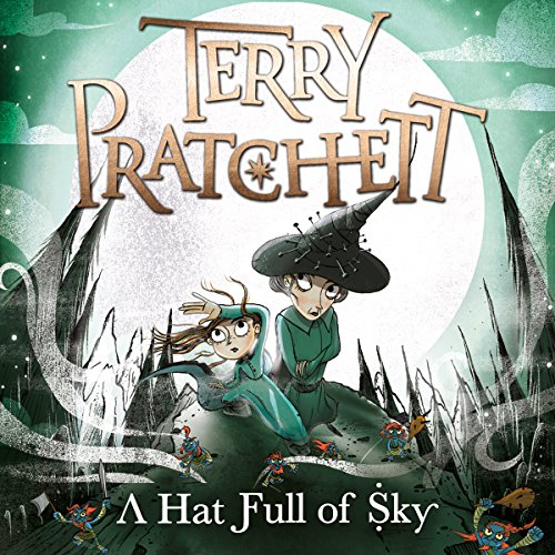 A Hat Full of Sky cover art