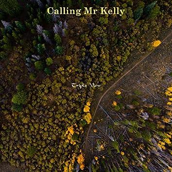 Calling Mr Kelly