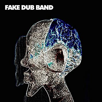 Fake Dub Band