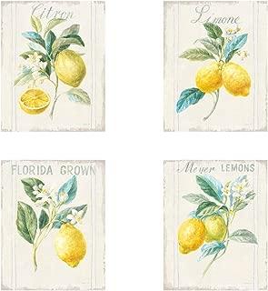 Floursack Lemon v2 by Danhui NAI, 4 Piece Art Print Set, 8 X 10 Inches Each, Kitchen Art