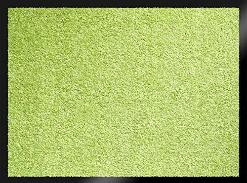 ID Mat Mirande Vert Tapis Paillasson, Fibres Nylon sur semelle PVC caoutchouté, 80 x 150 cm