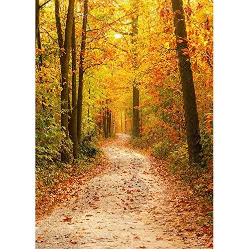 Fondos de fotografía de Bosque de otoño Fondo de fotografía de Puente de Madera Impresora de Tela de Vinilo 3D para Foto de Estudio A8 10x7ft / 3x2.2m
