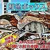 鮮魚セット 小田原 朝獲れ 鮮魚ボックス セット 8kg 【その日に水揚げされた鮮魚の詰合せ】早朝、競り落とした魚を詰め込んで即日配送いたします【冷蔵便】
