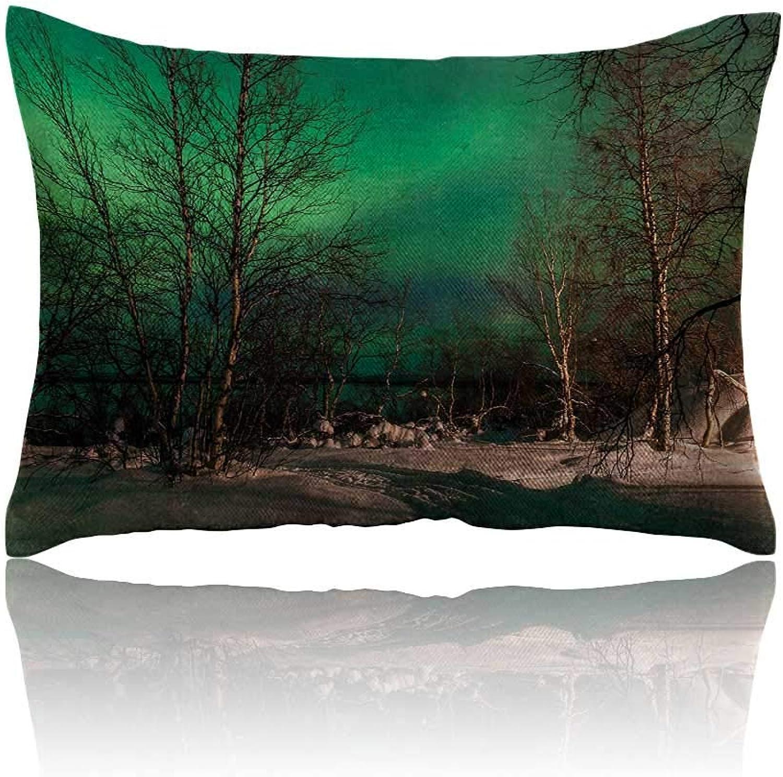 Anyangeight Northern Lights Small Pillowcase Snowy Frozen Road Path Between Leafless Trees Finland Park Zipper Pillowcase 20 x26 Jade Green Brown White