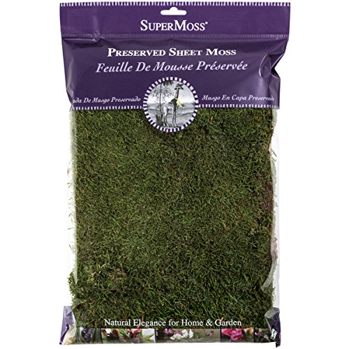 SuperMoss (21512) Preserved Sheet Moss, Fresh Green, 8oz (200 cubic inch)