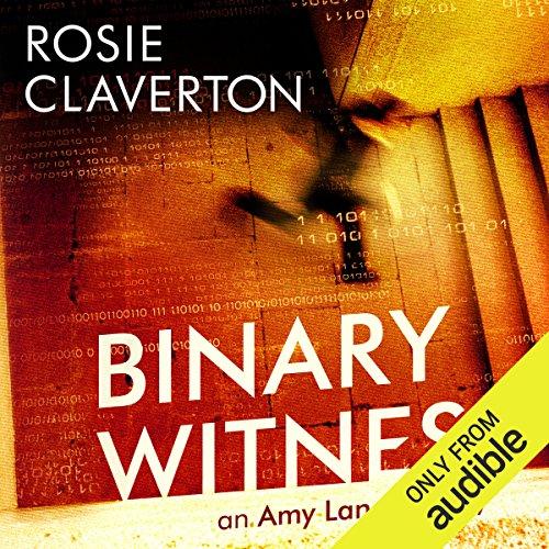 Binary Witness audiobook cover art