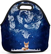Gesey-R4T Lunch Bag E-eve Um-Breon School/Office/Picnic Lunch Box for Kids/Men/Women Tote Handbag