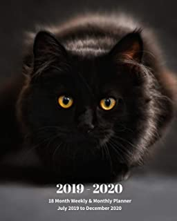 Amazon.com: black cat calendar