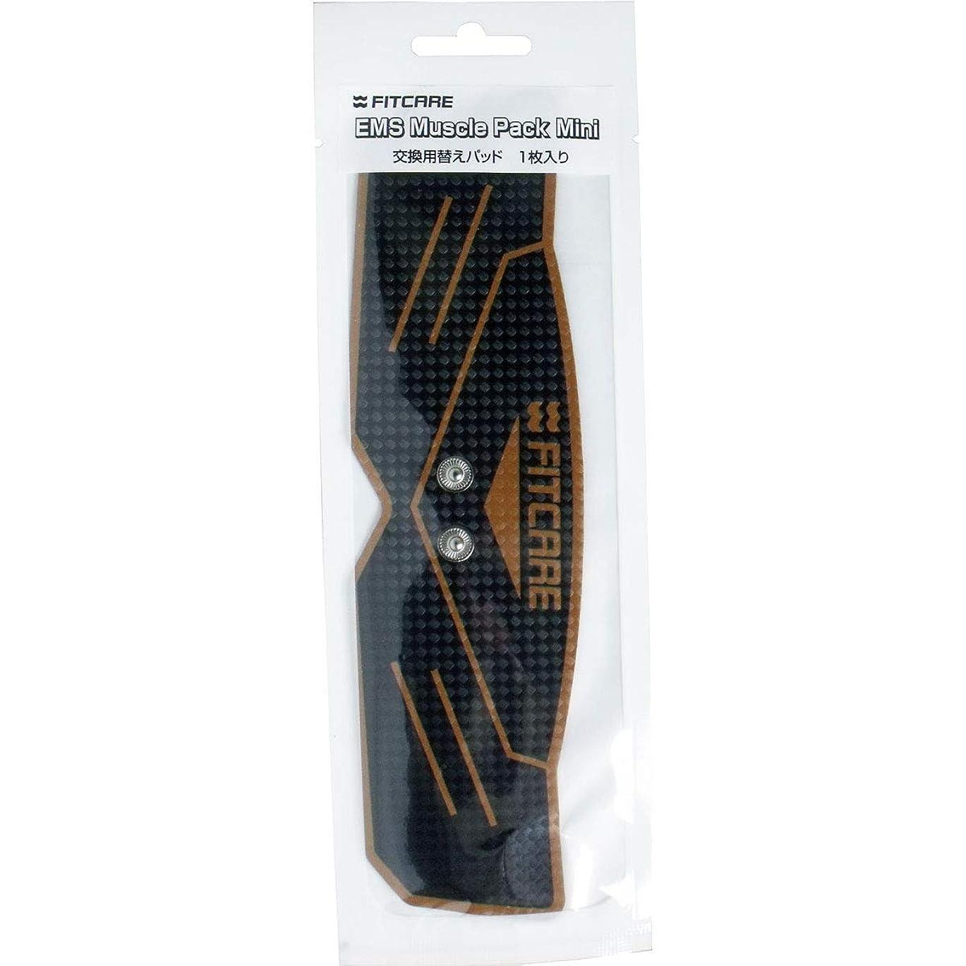 黒人ハイライト不道徳EMS マッスルパックミニ 交換用替えパッド 1枚入×10個セット