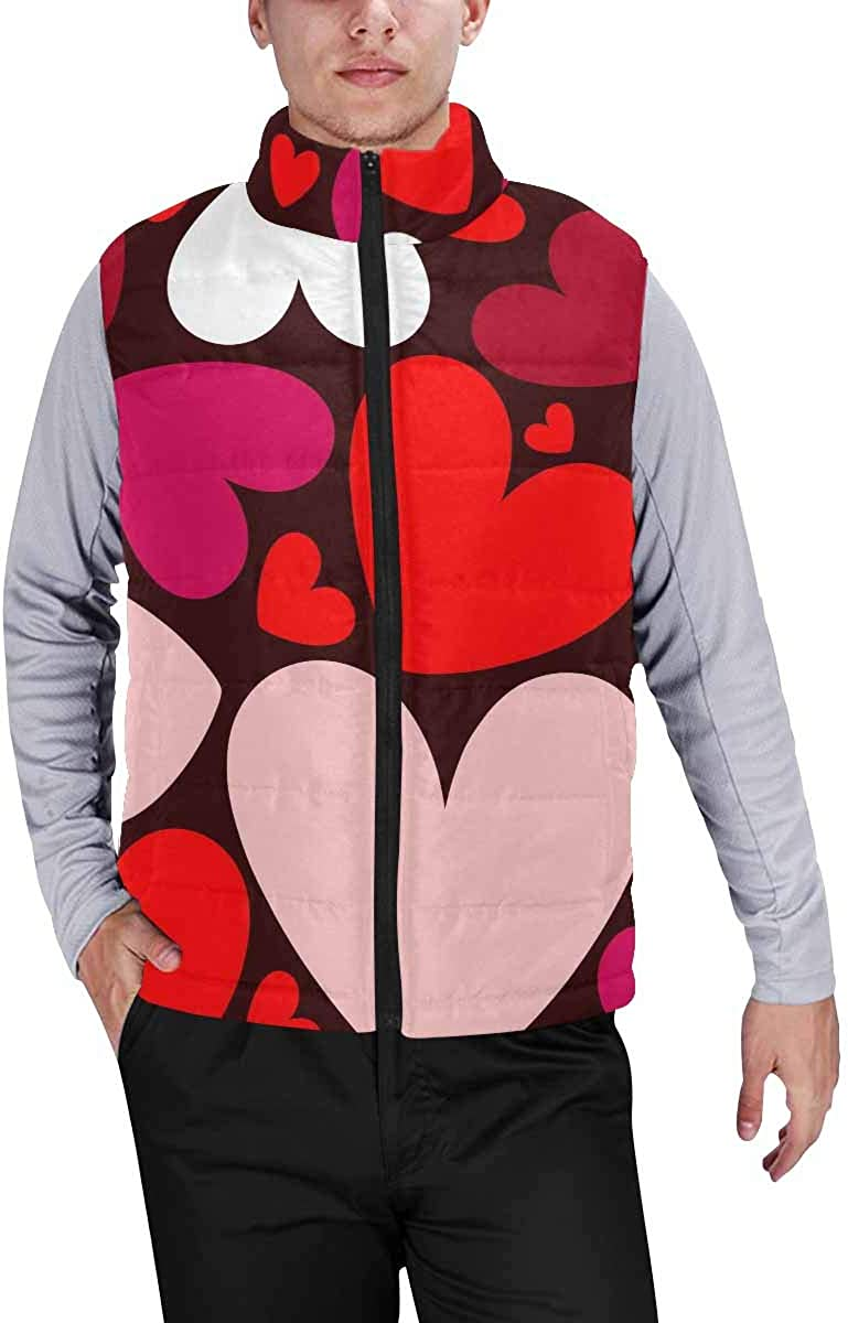 InterestPrint Lightweight Winter Padded with Full Zipper for Men Pattern with Ornate Feathers