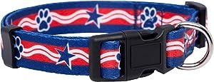 Native Pup American Flag Dog Collar (Medium, Paws)