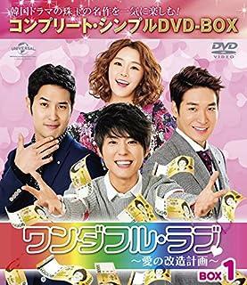 ワンダフル・ラブ~愛の改造計画~ BOX1 (コンプリート・シンプルDVD-BOX5,000円シリーズ)(期間限定生産)
