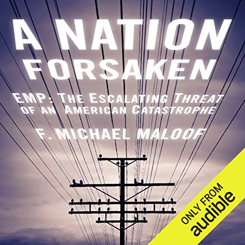 A Nation Forsaken audiobook cover art