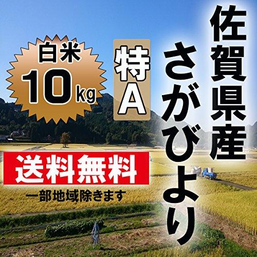 佐賀県産 さがびより 10kg 令和3年産