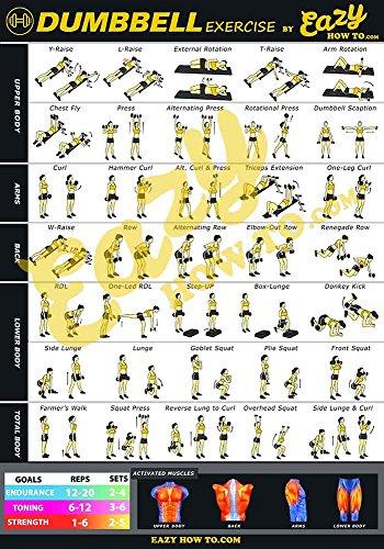 Eazy wie zu Hantel Übung Workout Poster Big 51,0 x 73,0 cm Zug Ausdauer, Ton, Build Stärke & Muscle Home Gym Diagramm