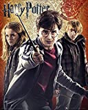 Harry Potter Maxiposter, Trio, 40 x 50 cm