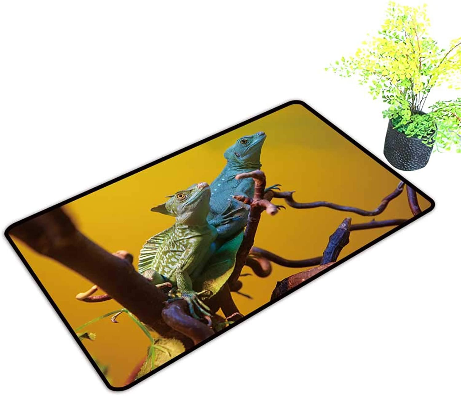 Gmnalahome Super Absorbs Mud Doormat Two Iguanas on a Dry Branch No Odor Durable Anti-Slip W39 x H19 INCH