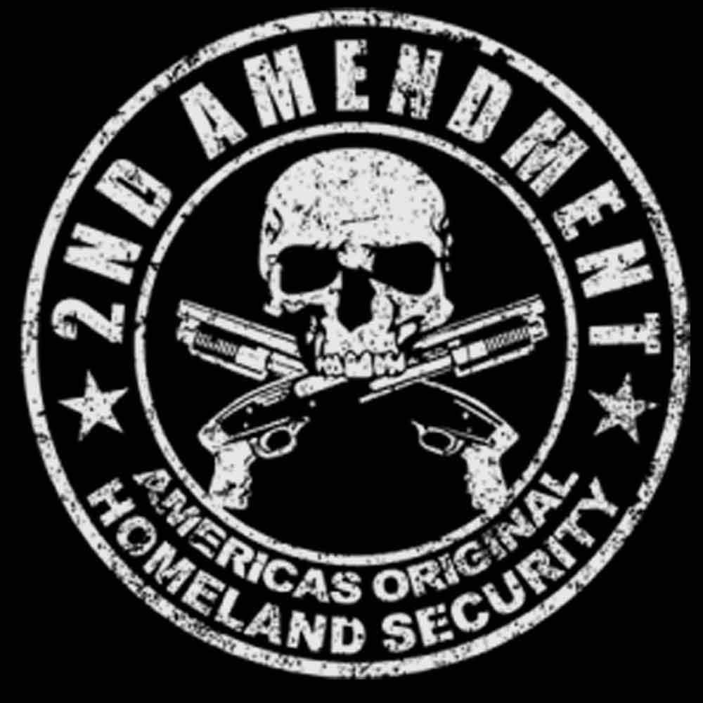 Second Amendment Original Homeland Security Printed T-Shirt