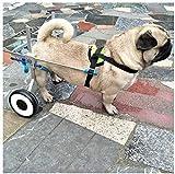 AYHa Carros para perros, adecuados para mascotas, rehabilitación, discapacidad de la extremidad, caminar, perros grandes y pequeños, ajustables, 2 ruedas, 1.5 Kg - 50,*-Pequeño