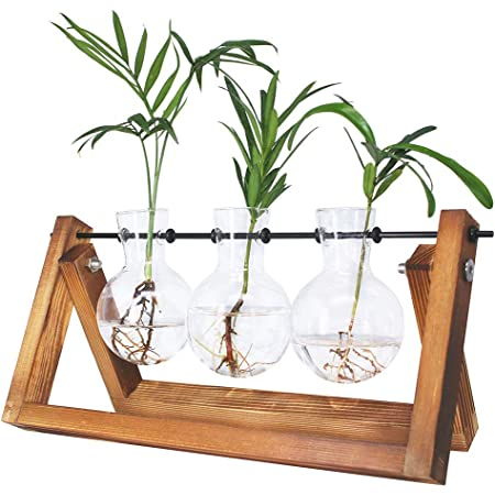 3pcs Glass Flower Vase Hydroponic Plants Terrarium Pot Home Office Decor