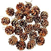 PULABO 品質24ピースクリスマスパインコーンストリングパインコーンペンダントクラフトオーナメントforクリスマスツリーデコレーションギフトタグ多色スタイリッシュで人気生活の質の向上あげるな物