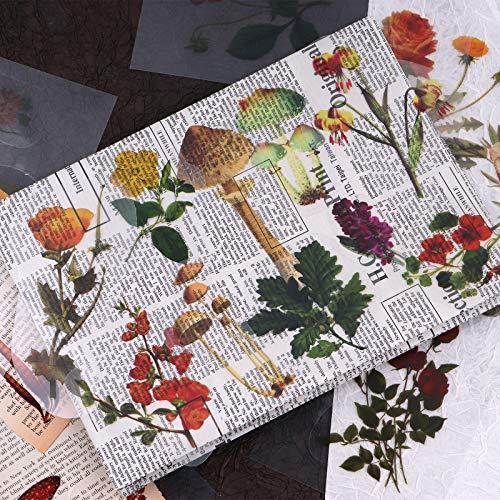 RisyPisy Juego de 42pcs Pegatinas, Supergrandes, con Diferentes Formas Especiales de Plantas y Flores Decorativas para Planificadores, Diarios de Balas, Cuadernos, Portátiles, Calendarios