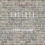 Y300-Doom