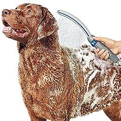 Beste Hundepflege-Versorgungsmaterialien für das Halten ihres Pelzes, der fabelhaft schaut