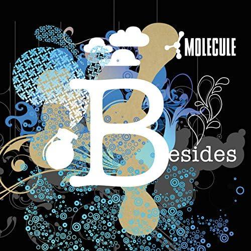 Molecule feat. Zig Zag, Flox, Féfé, Leeroy, Blond Dub Sexy Sound & Martina Topley-Bird