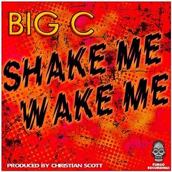 Shake Me Wake Me