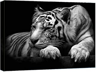 Canvas Wall Art - Black White Tiger Animal Painting -12