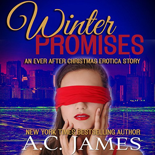 Winter Promises audiobook cover art