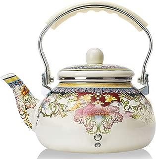 Best enamel water kettle Reviews