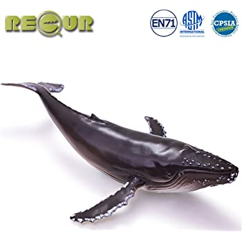 Humpback Whale Quality Construction from Safe and BPA Free Materials For Ages 3 and Up 202029 Safari Ltd Wild Safari Sea Life Realistic Hand Painted Toy Figurine Model