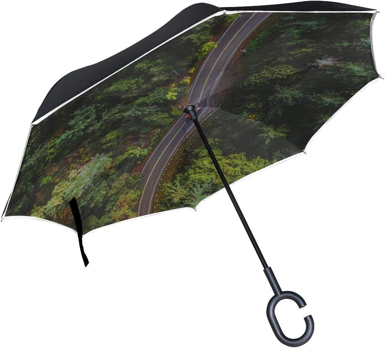 Rh Studio Ingreened Umbrella Road Top View Trees Ingreened Umbrella Large Double Layer Outdoor Rain Sun Car Reversible Umbrella