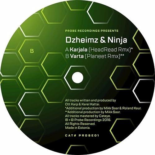 Dzheimz & Ninja - Karjala (HeadRead Remix) de Dzheimz ...