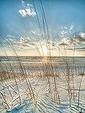 YISUMEI Hem Gewichte Vorhang Duschvorhang Anti-Schimmel Duschvorhangringe Wasserabweisender 120x180 cm Ocean Beach Sonnenaufgang Sonnenuntergang