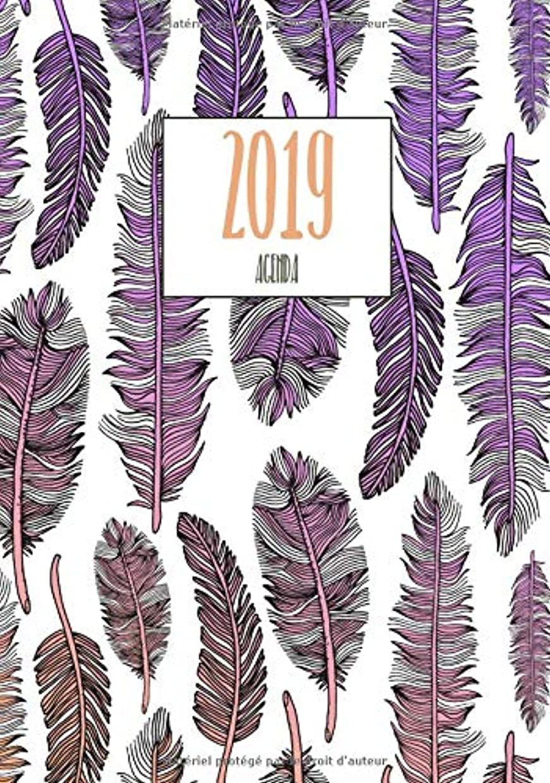 れるジョセフバンクスプラスチックAgenda 2019: Motif Plumes, Taille 17x22 cm, agenda de poche, Année 2019 (Janvier à Décembre 2019)